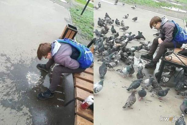 Nastały chłodne dni. Opiekuńczy tata karmi młode ciepłym ptasim mleczkiem.