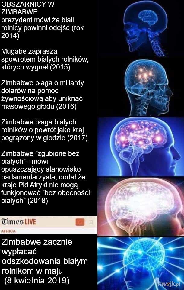 Logika Zimbabwe