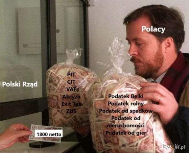 Podatki