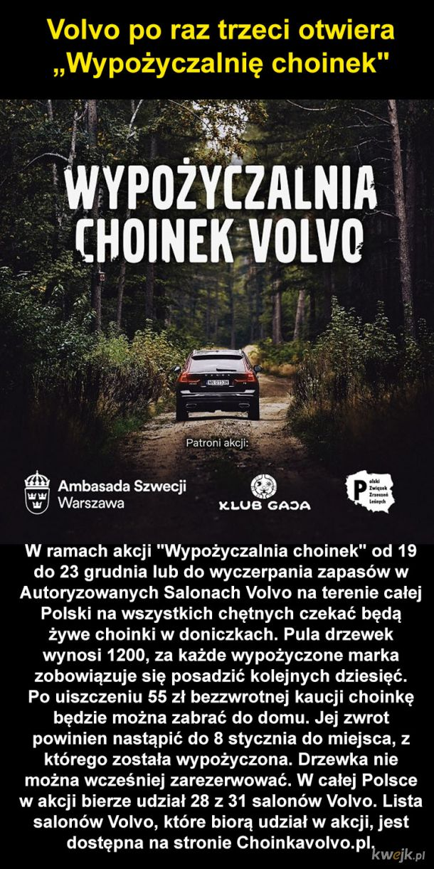 Choinka z Volvo