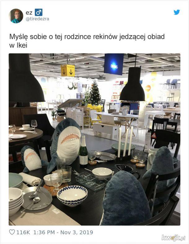 Ktoś chowa pluszowe rekiny po całej Ikei, a ludzie próbują je znaleźć