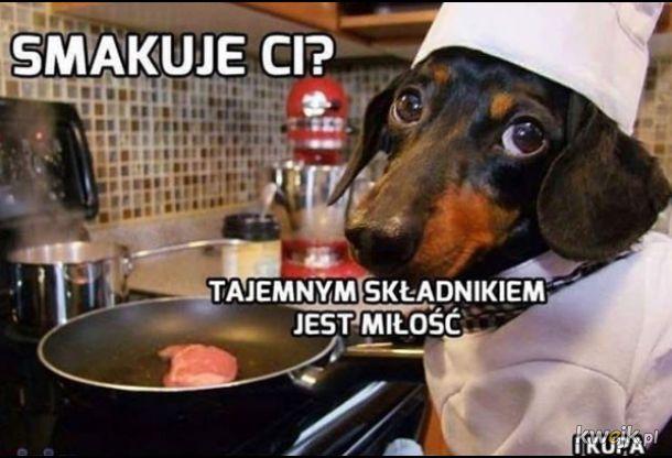 Najlepszy kucharze ever
