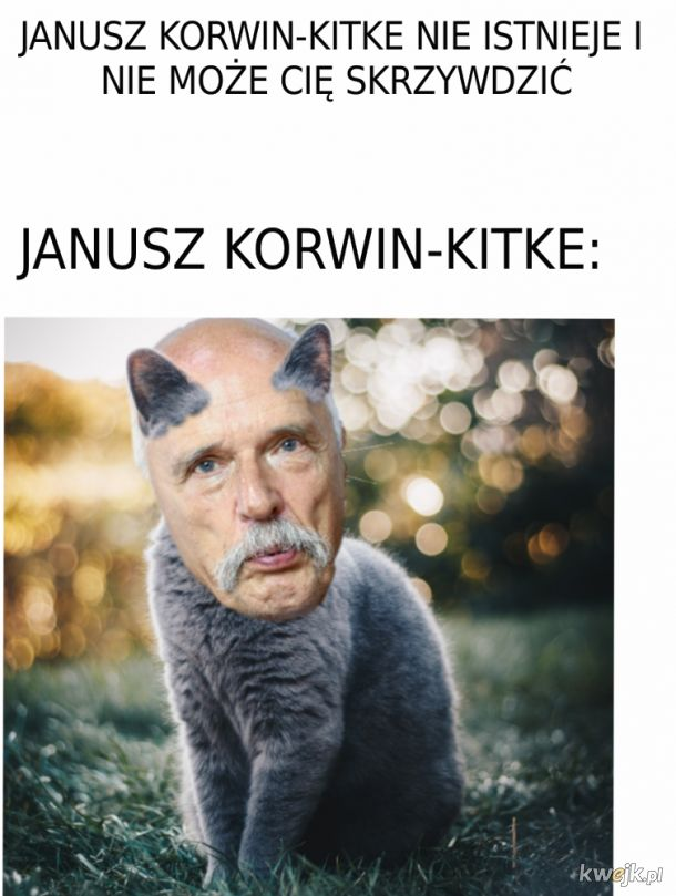 Korwin-Kitke