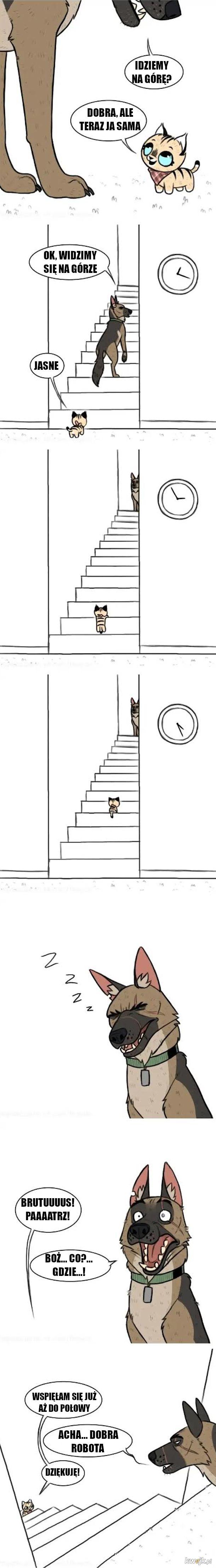 Wspinaczka na górę