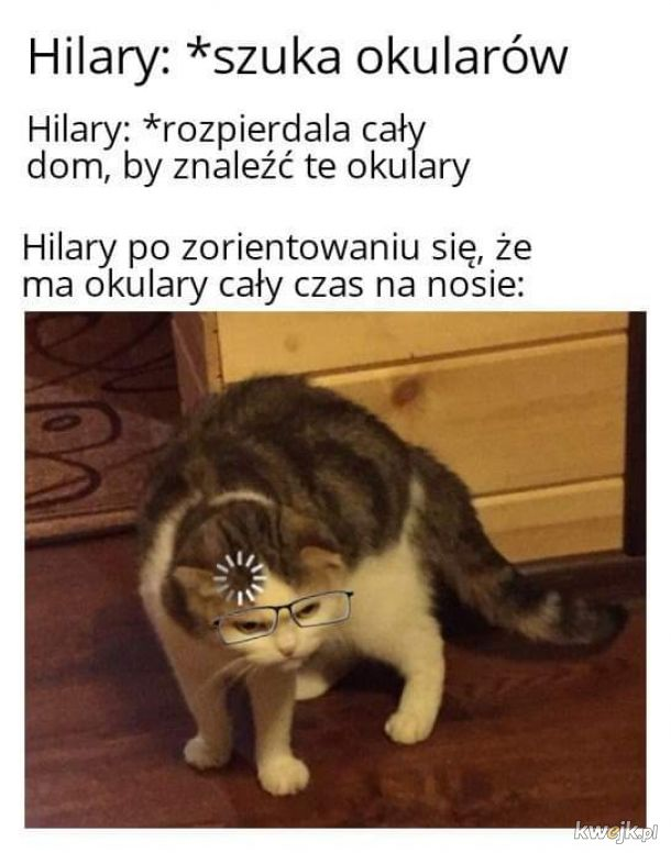 Hilary, co zgubił okulary