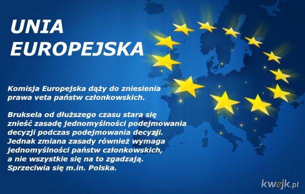 Unia Europejska dąży do..