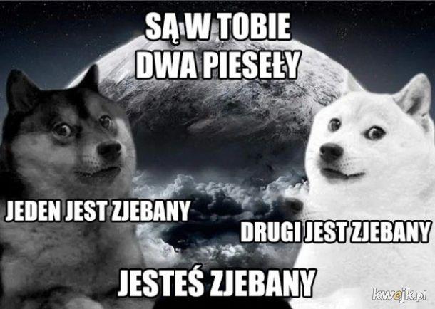 Dwa Pieseły