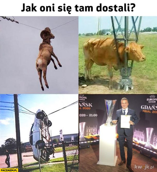 """Sławomir """"Atmosferić """" Peszko  Ambasador finału"""