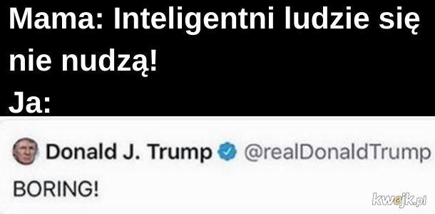 Trumpeł inteligenteł