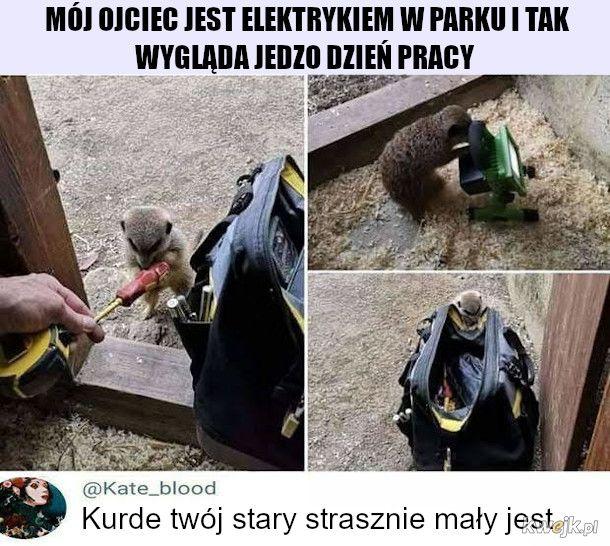 Pan Elektromonter