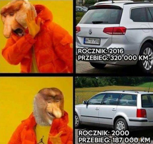 Januszowa logika