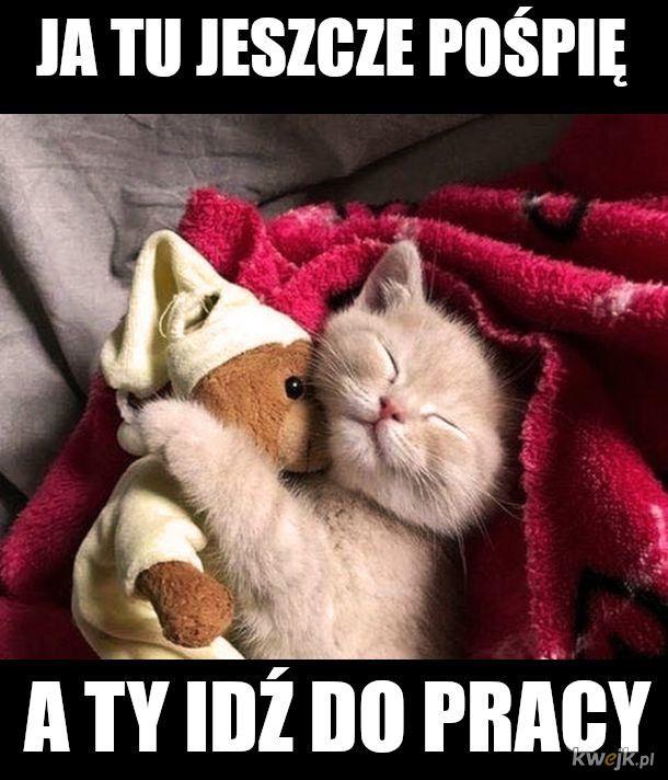 Dobranoc na dzien dobry