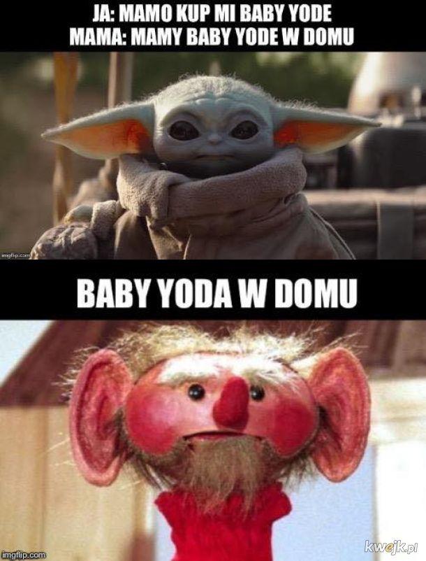 Yoda w domu