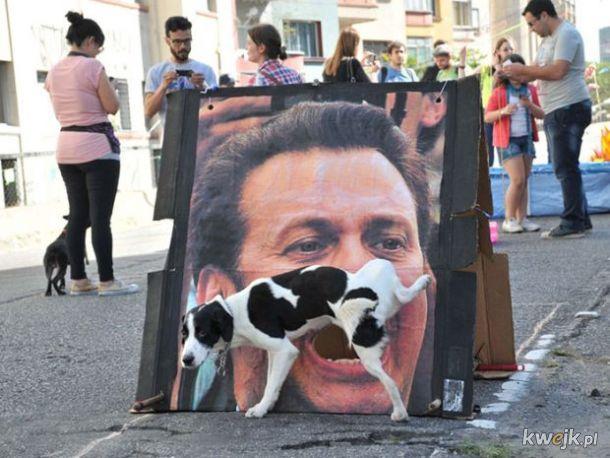 Zdjęcia wykonane na ulicy - w idealnym miejscu i w idealnym momencie