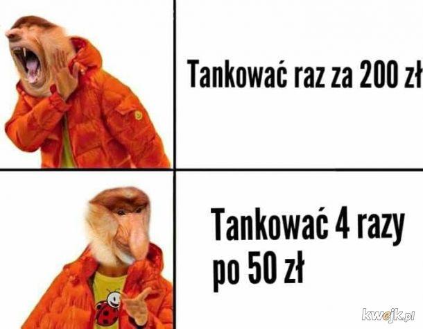 Taktyka Janusza