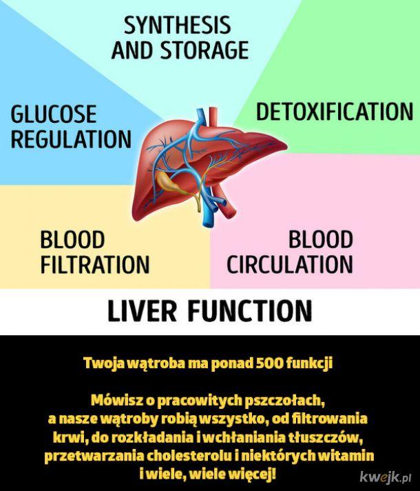 Garść faktów, które pokazują, jak wyjątkowe może być Twoje ciało