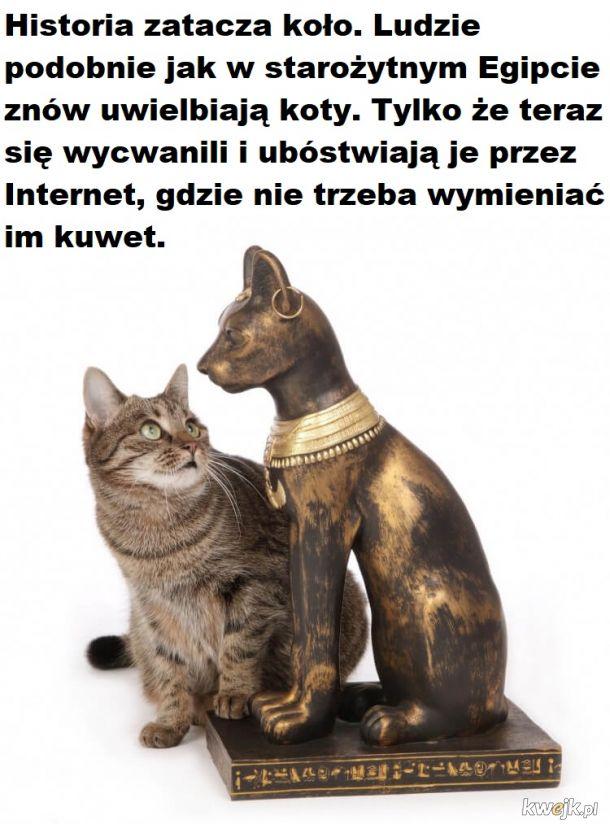 Kotełeły