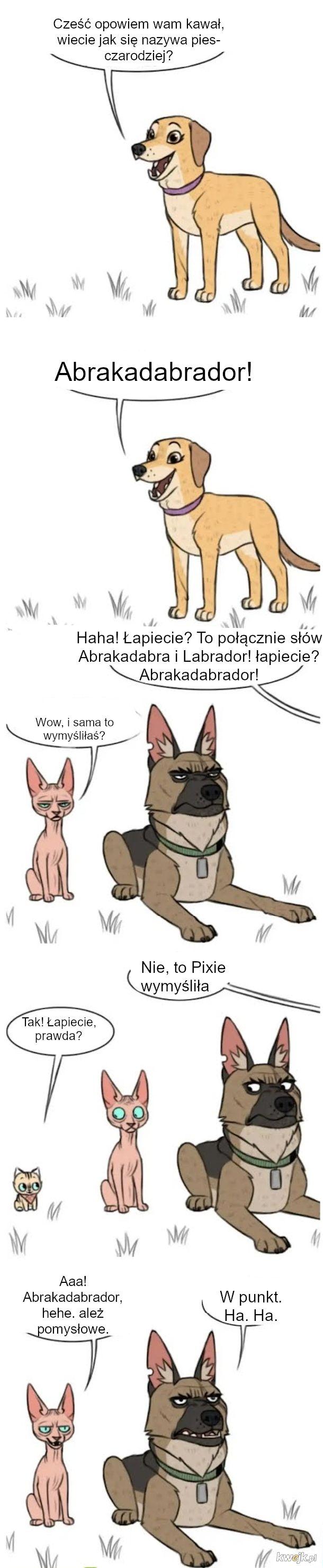 Klasyczny humor