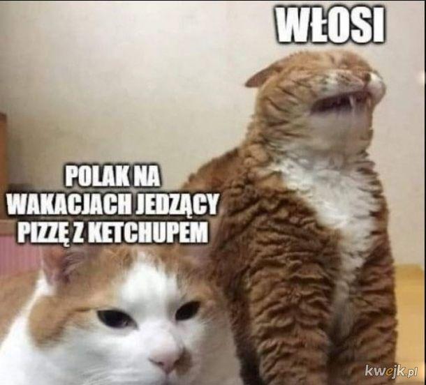 Pizza polaka