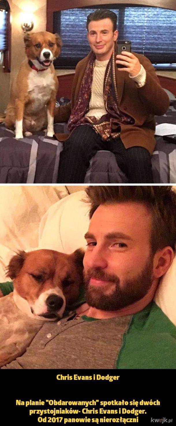 Niektórzy gwiazdorzy po zakończeniu pracy nad filmem wracają do domu z nową żoną czy mężem, a inni z pracującym z nimi zwierzątkiem
