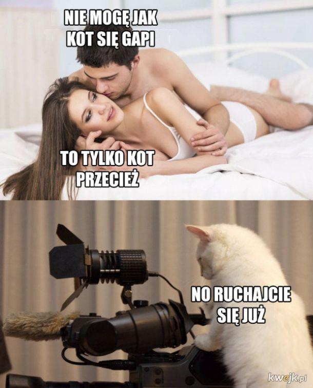 Koteł taki jest