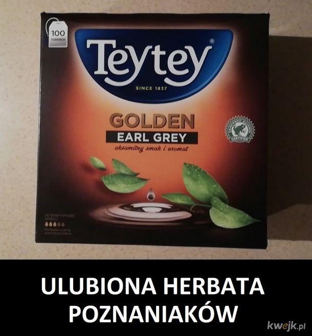 ULUBIONA HERBATA POZNANIAKÓW