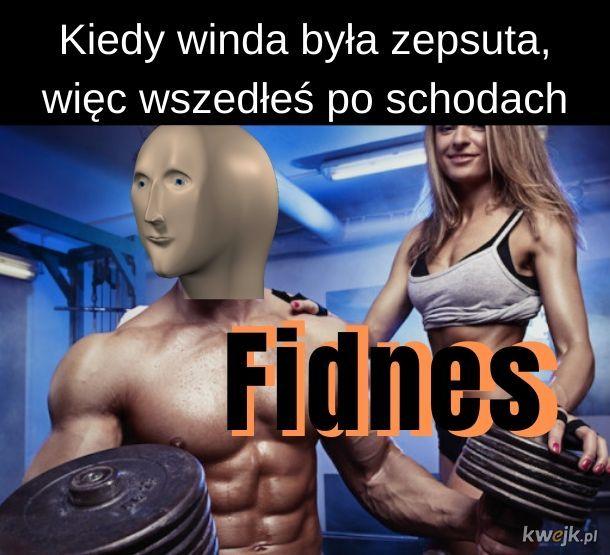 Fidnes