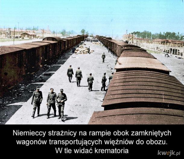 Holokaust na zdjęciach w kolorze