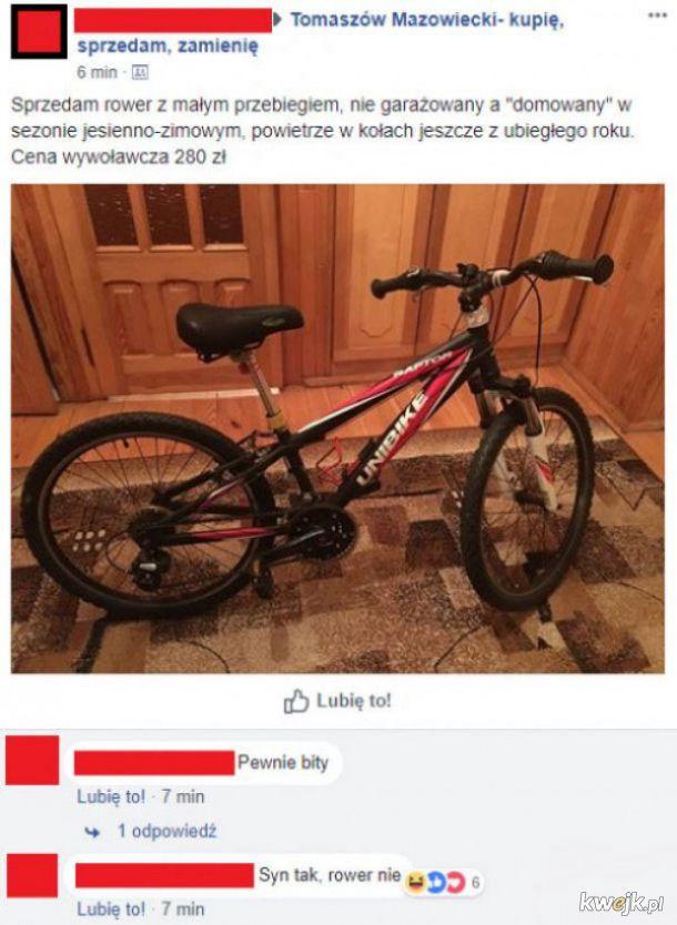 Rower niebity
