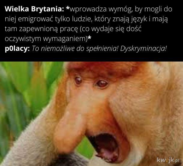 Najgorsze jest to, że w żadnej polskiej szklole nie uczą języka angielskiego