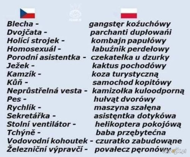 Czeski żart z języka polskiego