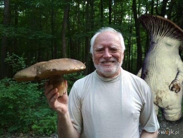 Kiedy udało ci się znaleźć największego grzyba w lesie