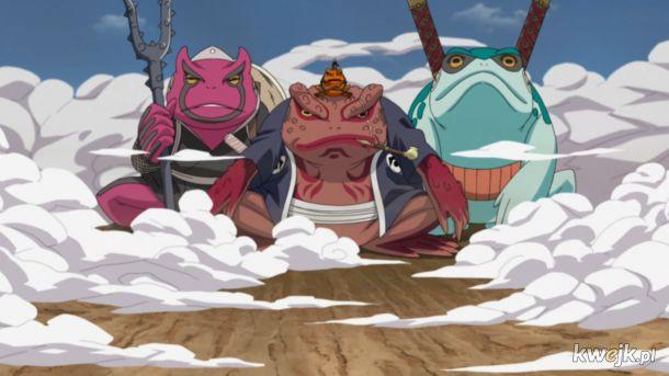 żaba na dzień żab #16 moje ulubione żabki