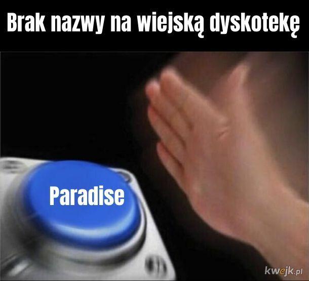 Do Paradise chodzą Parasite