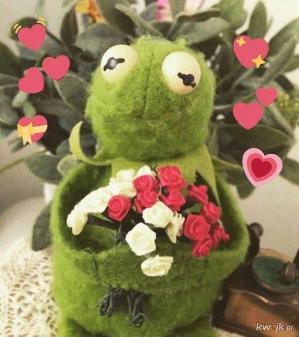Kermit jest szczęśliwy z powodu dna żab