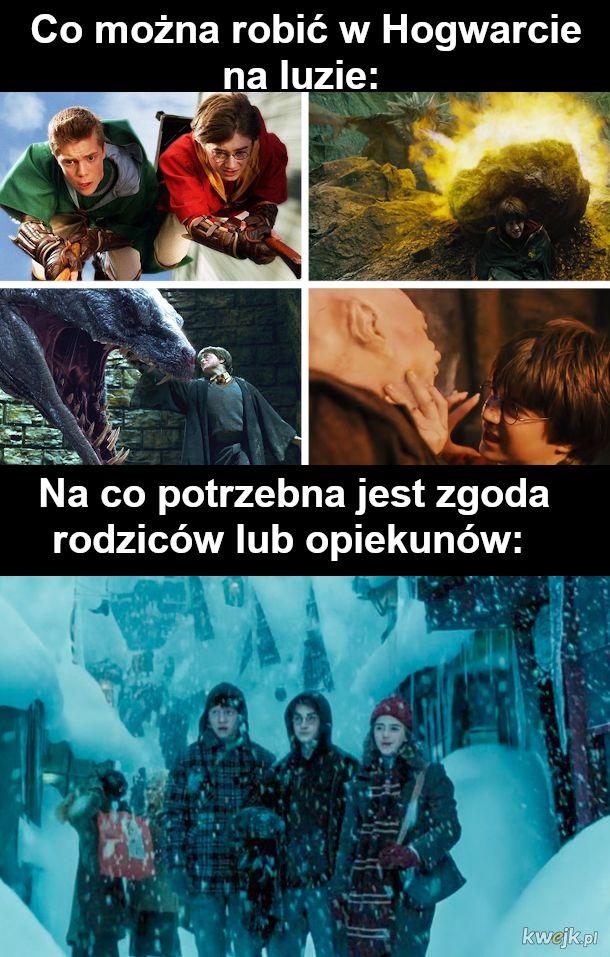 Co jest nie tak z uniwersum Harryego Pottera?