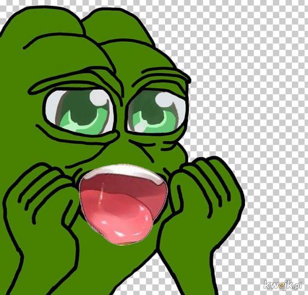 żaba na dzień żab