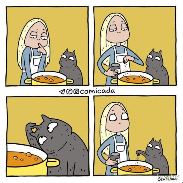 Gotowanie z kotkiem