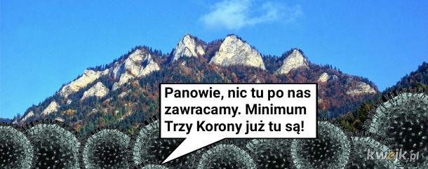 Dlaczego Koronawirusy nie pojawiły się w Polsce?