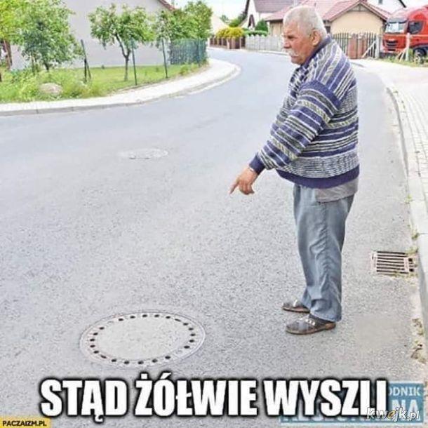 Janusz zawsze czujny xd