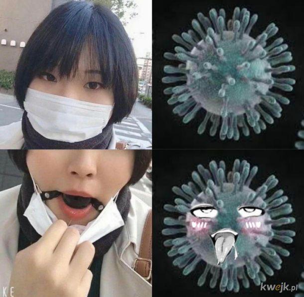 Woronawirus w Japonii