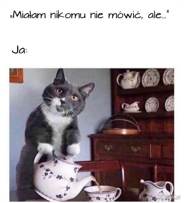 Herbatki?