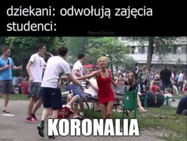 Koronalia