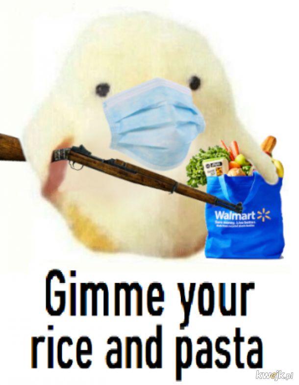 Pamiętajcie dzieci, gdy zobaczysz agresywnego ptaszka, to dajcie mu całe zapasy, to ja.
