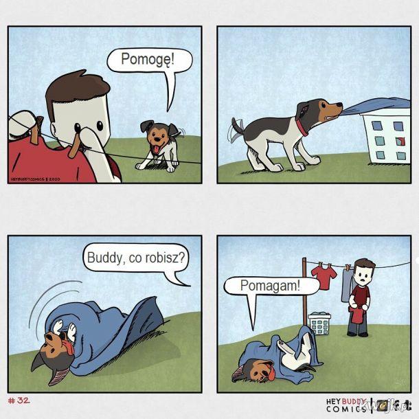 Oto komiksy zainspirowane przez psa, z którymi może się utożsamiać większość właścicieli psów, obrazek 5