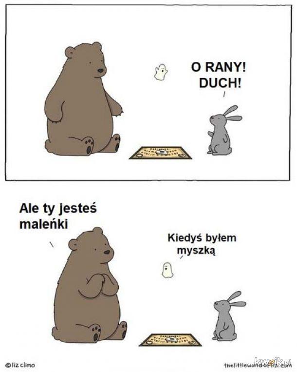 Duszek