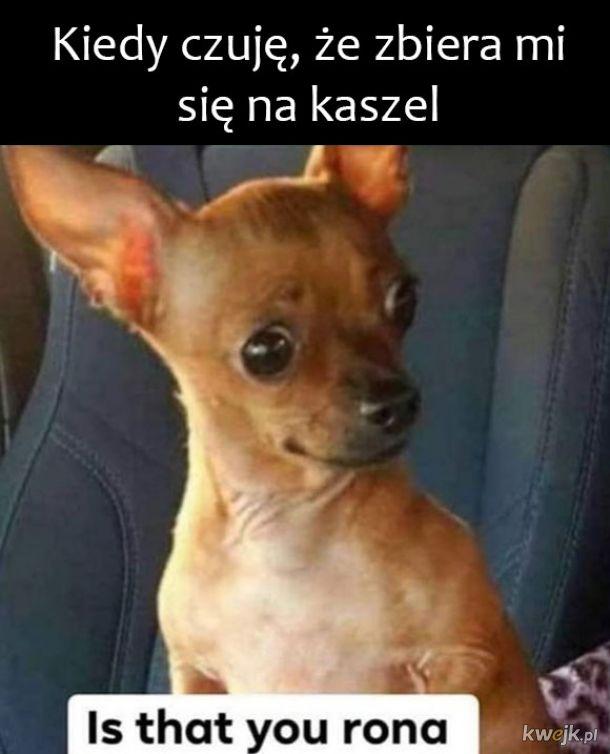 Kaszelek