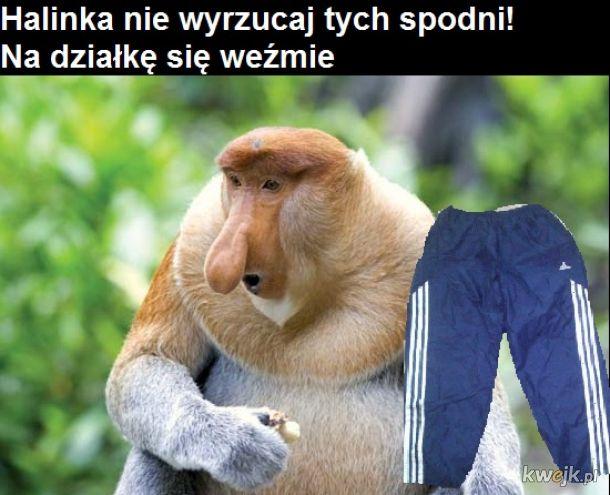 Boże chroń Janusza od zachorowania na koronawirusa, obrazek 7