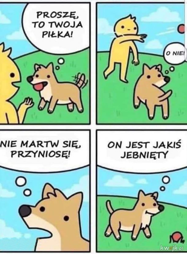 Pieski takie są