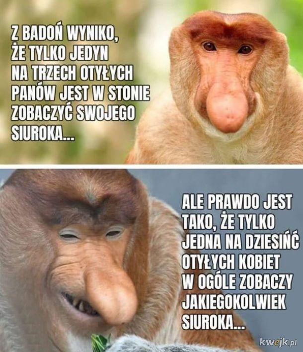 Boże chroń Janusza od zachorowania na koronawirusa, obrazek 9